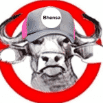 Bhensa